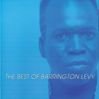 Barrington Levy Too Experience