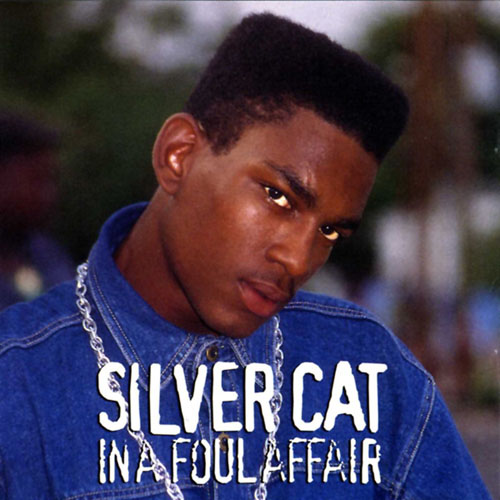 Silver Cat – In A Foul Affair