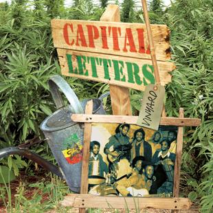 Vinyard – Capital Letters